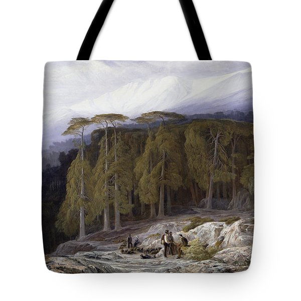 The Forest Of Valdoniello - Corsica Tote Bag by Edward Lear