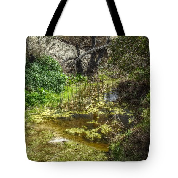 The Frog Pond Tote Bag by Cindy Nunn