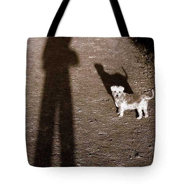 The Giants Companion Tote Bag by Ed Smith