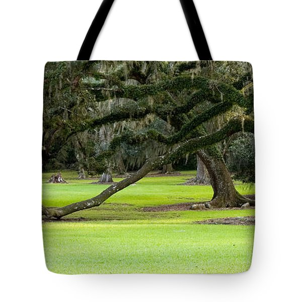 The Giving Tree Tote Bag by Scott Pellegrin
