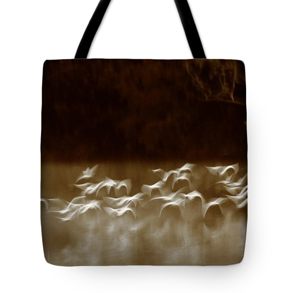 The Glades Tote Bag by Bruce J Robinson