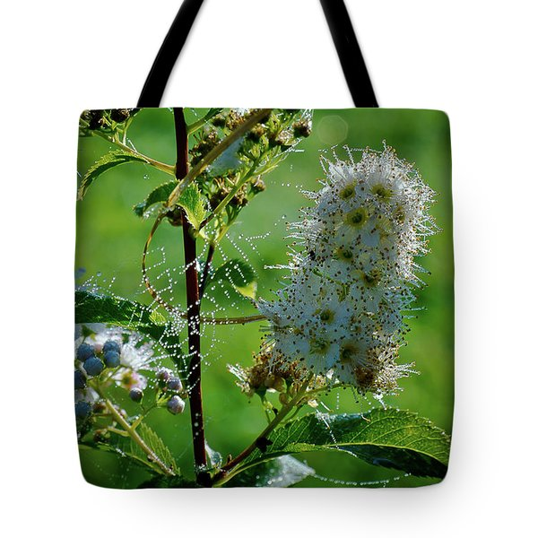 Tote Bag featuring the photograph The Glass Bead Game by Michael Goyberg