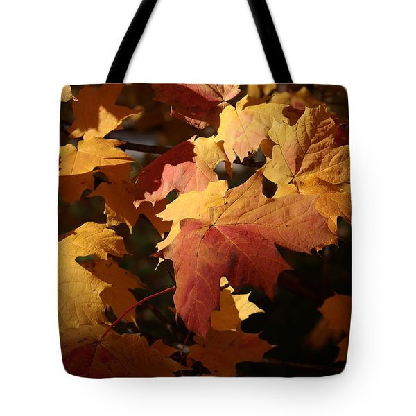 The Golden Days Of October Tote Bag by Lyle Hatch