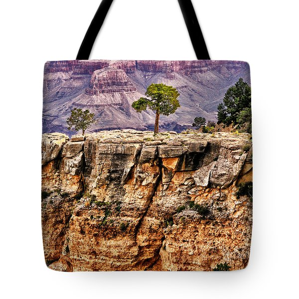 The Grand Canyon Iv Tote Bag by Tom Prendergast