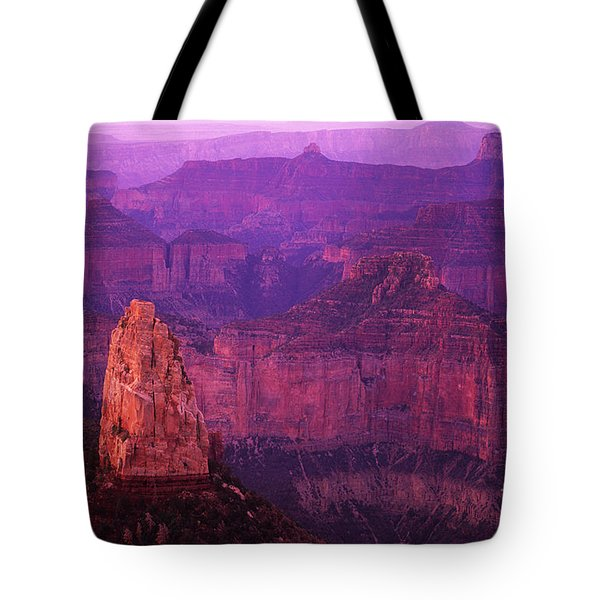 The Grand Canyon North Rim Tote Bag by Bob Christopher