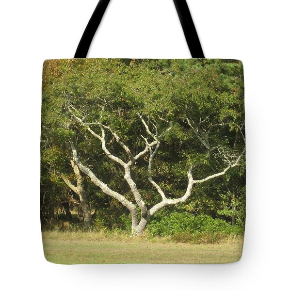 The Hand Of Nature Tote Bag