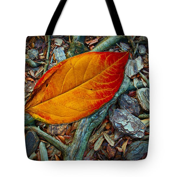 The Last Leaf Tote Bag by Barbara Middleton