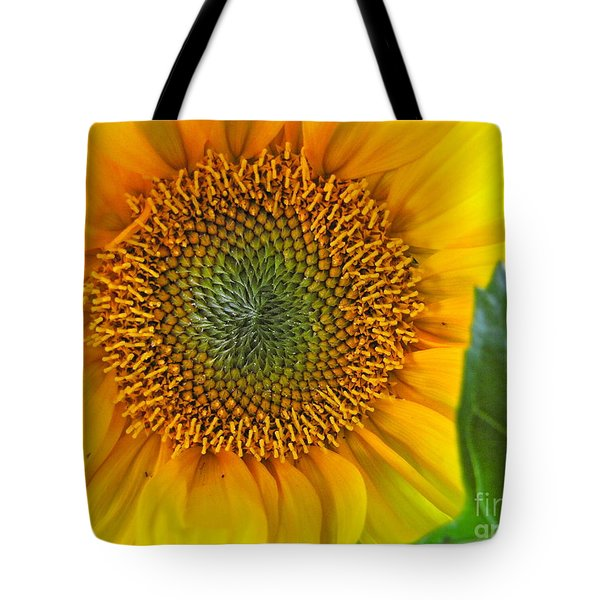The Last Sunflower Tote Bag by Sean Griffin