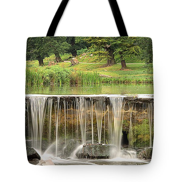 The Lin Tote Bag by Linsey Williams