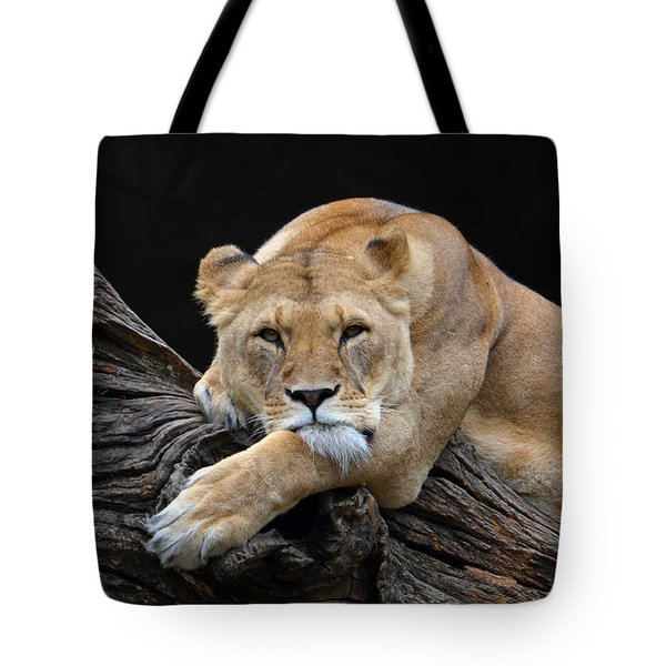 The Lioness Is Watching You Tote Bag by Eva Kaufman