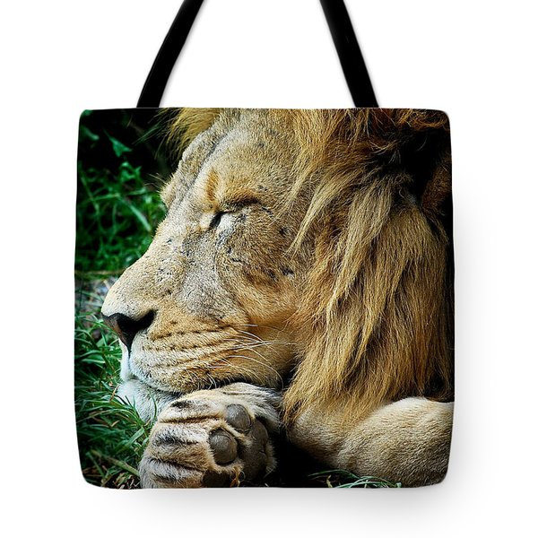 The Lions Sleeps Tote Bag