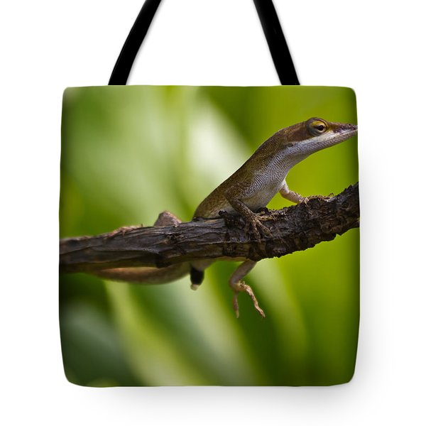 Tote Bag featuring the photograph The Lookout by Roger Mullenhour