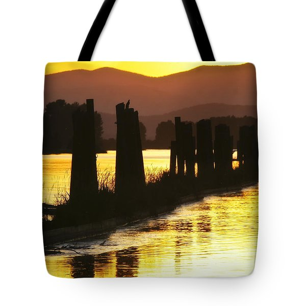 The Lost River Of Gold Tote Bag by Albert Seger