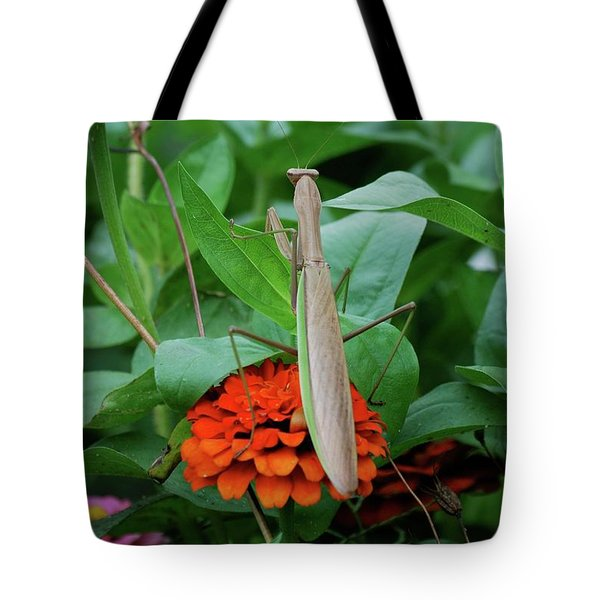 Tote Bag featuring the photograph The Patience Of A Mantis by Thomas Woolworth