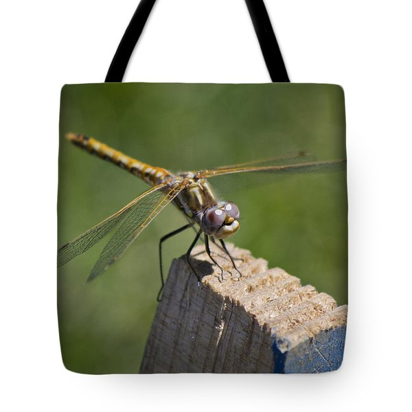 The Perch Tote Bag by Priya Ghose