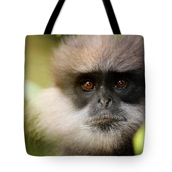 The Purple-faced Langur. Nuwara Eliya.sri Lanka Tote Bag by Jenny Rainbow