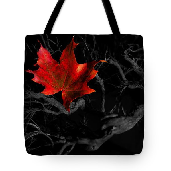 Tote Bag featuring the photograph The Red Leaf by Beverly Cash