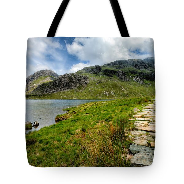 The Rocky Path Tote Bag by Adrian Evans