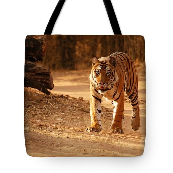 The Royal Bengal Tiger Tote Bag