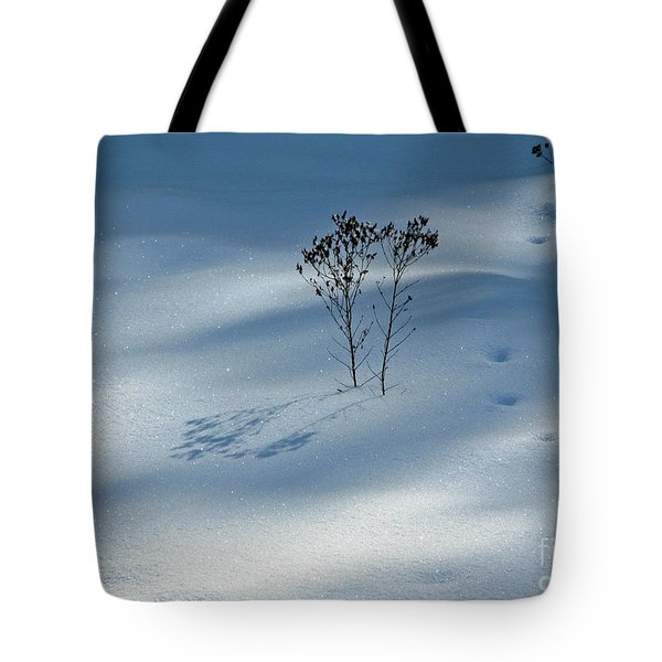 Tote Bag featuring the photograph The Shadow Of Loneliness by Ausra Huntington nee Paulauskaite