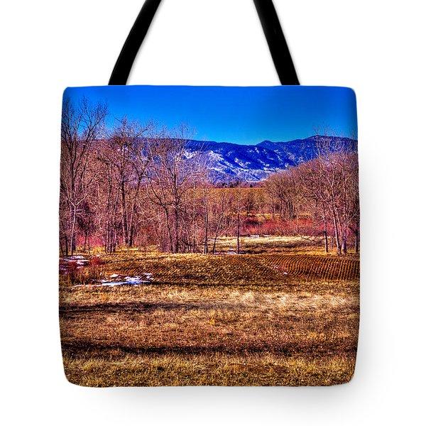 The South Platte Park Landscape Tote Bag by David Patterson