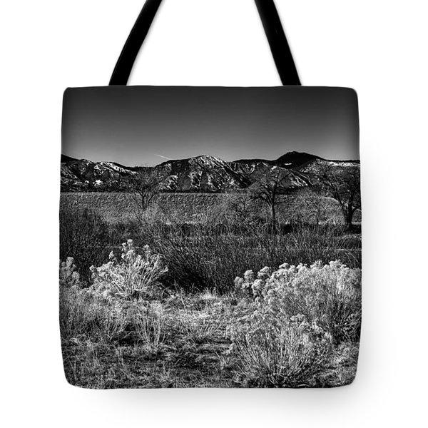 The South Platte Park Landscape II Tote Bag by David Patterson
