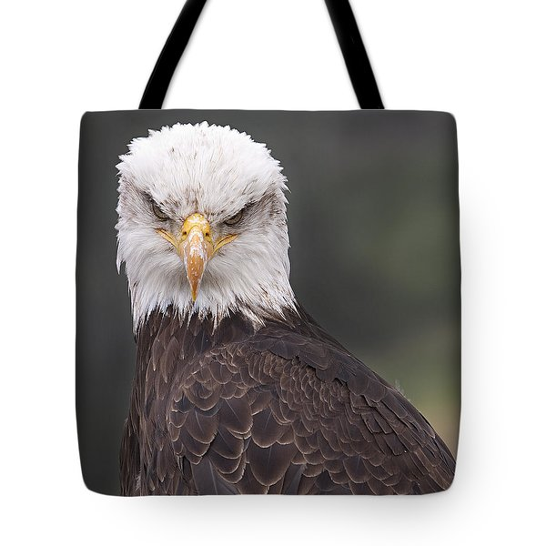 The Stare Tote Bag by Eunice Gibb