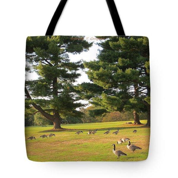 The Sunny Stroll Tote Bag by Sonali Gangane