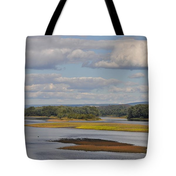 The Susquehanna River At Kingston Pa. Tote Bag by Bill Cannon