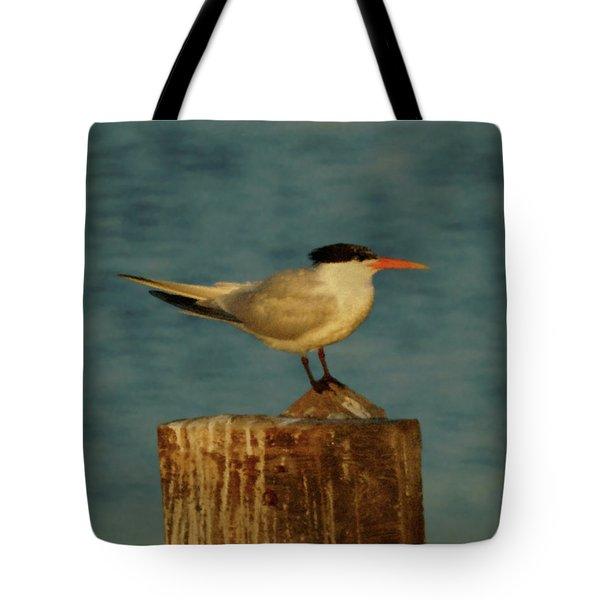 The Tern Tote Bag by Ernie Echols