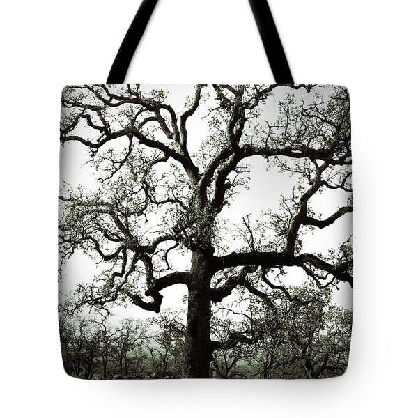 The Tree Tote Bag by Holly Blunkall