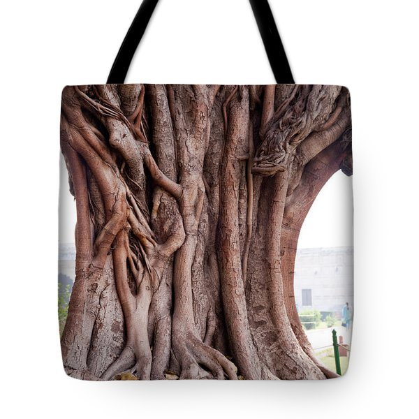 Tote Bag featuring the photograph The Twisted And Gnarled Stump And Stem Of A Large Tree Inside The Qutub Minar Compound by Ashish Agarwal