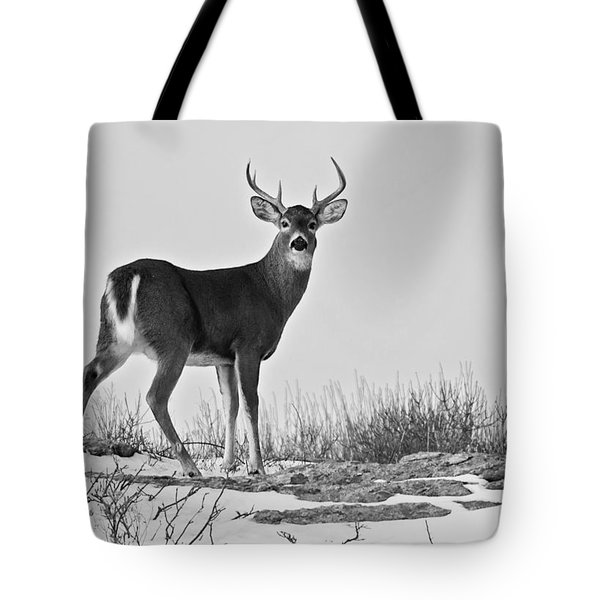 Tote Bag featuring the photograph The Watching Deer by Nancy De Flon