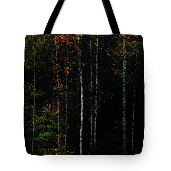 The Way To Glow From The Darkness Tote Bag by Jenny Rainbow