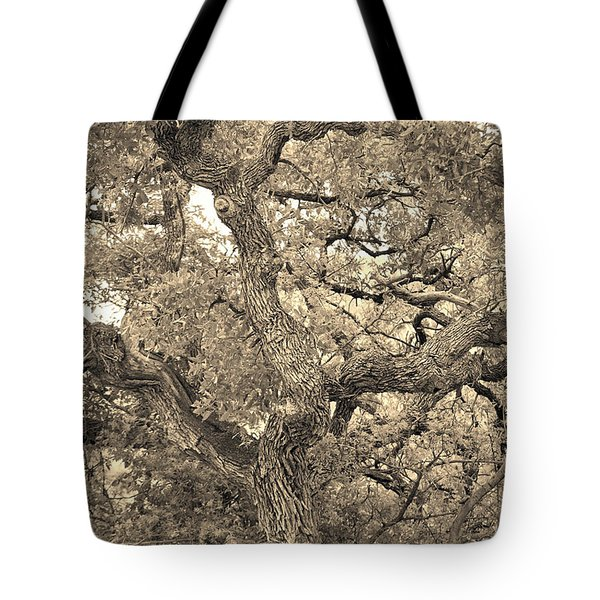 The Wicked Tree Tote Bag