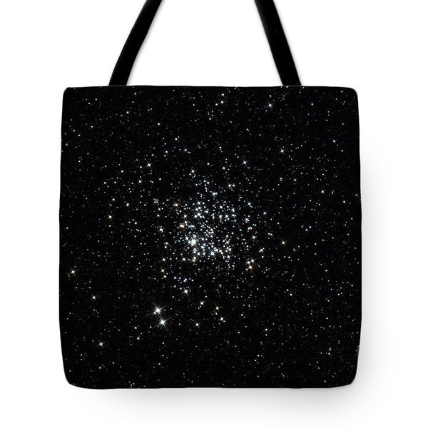 The Wild Duck Cluster Tote Bag by Rolf Geissinger