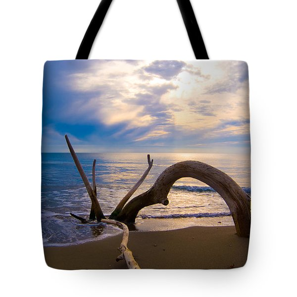 The Wooden Arch Tote Bag by Marco Busoni