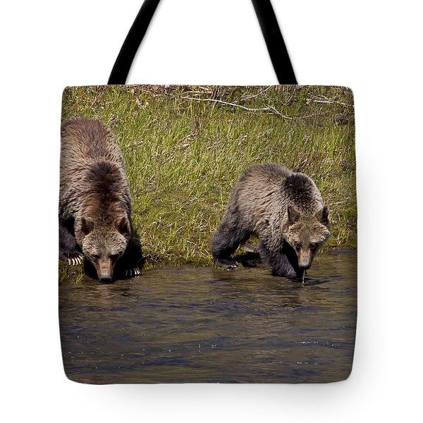 Tote Bag featuring the photograph Thirsty Grizzlies by J L Woody Wooden