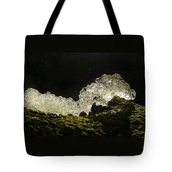 Tote Bag featuring the photograph This Is A Very Hungry Cold Caterpillar  by Steve Taylor