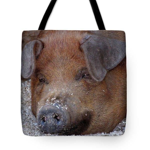 This Little Piggy Took A Nap Tote Bag