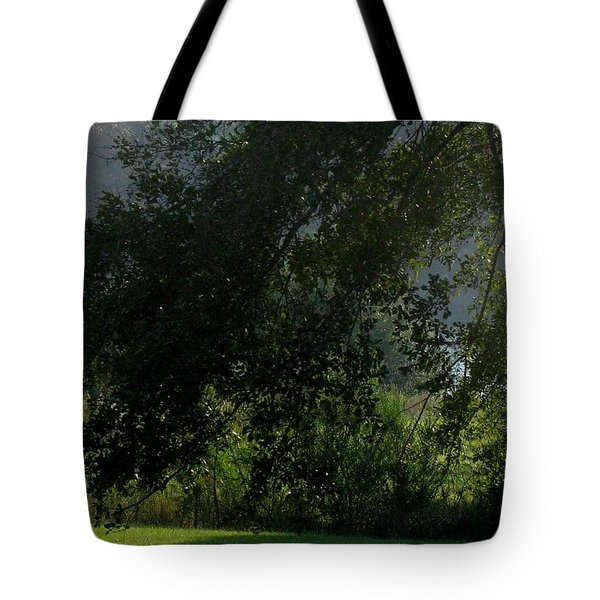 Tote Bag featuring the photograph This Ole Tree by Maria Urso
