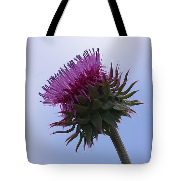 Thistle 1 Tote Bag