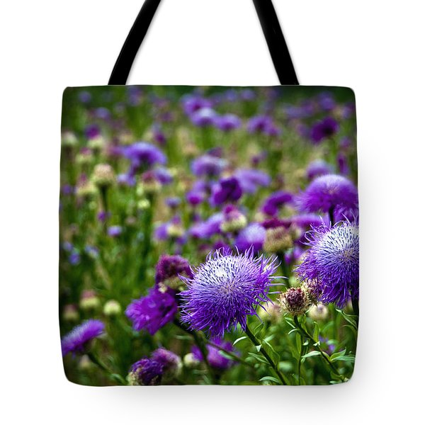 Thistle Field Tote Bag by Tamyra Ayles