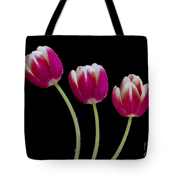 Three Of A Kind Tote Bag by Susan Candelario