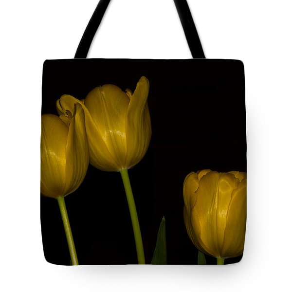 Tote Bag featuring the photograph Three Tulips by Ed Gleichman