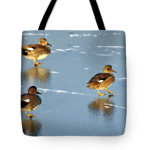 Threesome Tote Bag by Marty Koch
