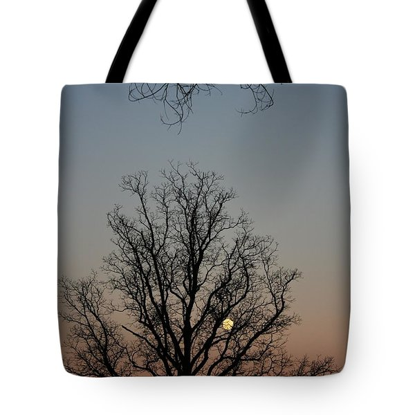 Through The Boughs Portrait Tote Bag by Dan Stone