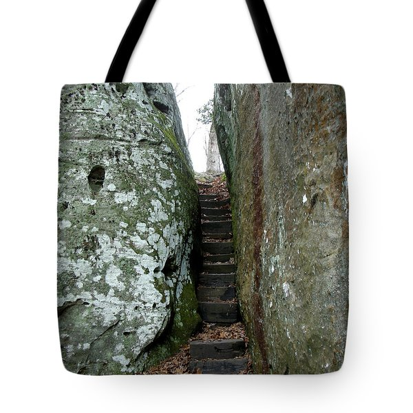 Tote Bag featuring the photograph Through The Crack by Paul Mashburn