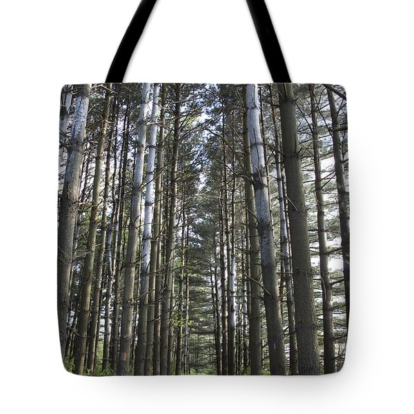 Through The Woods Tote Bag by Jeannette Hunt