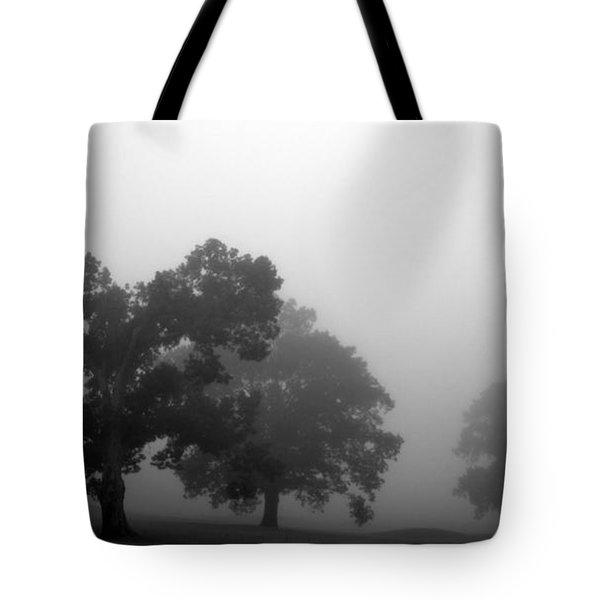 Through Time Tote Bag by Amanda Barcon